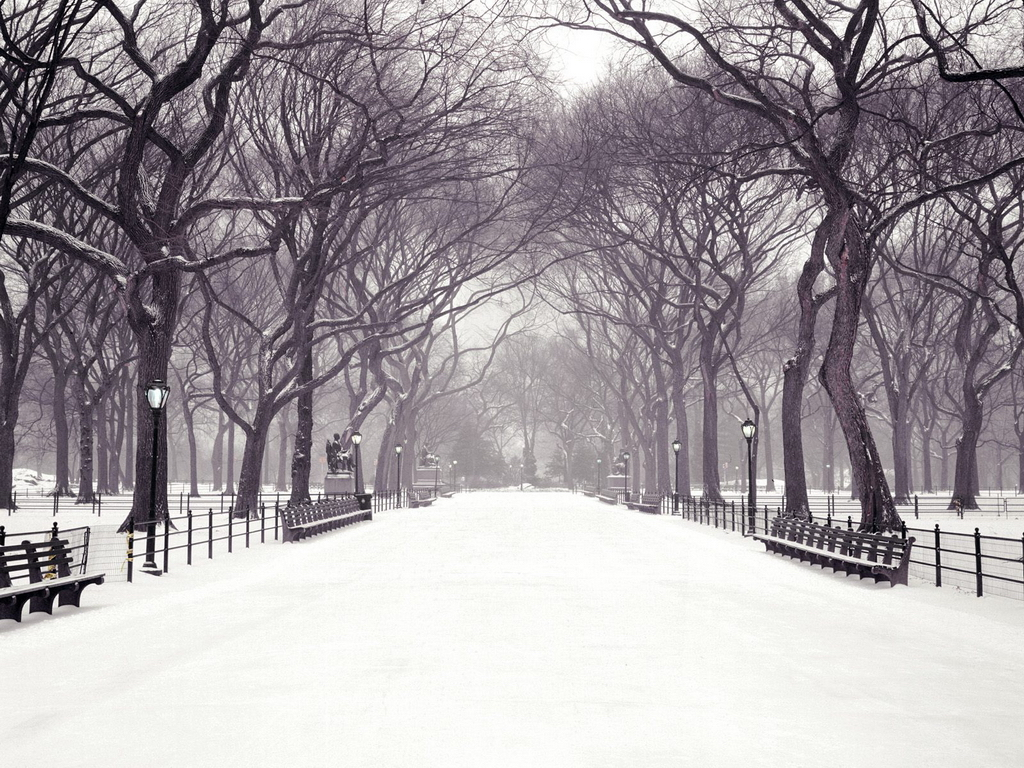 hecallsmestatuary-walk-central-park-new-york-city-new-york-christmas-wallpaper