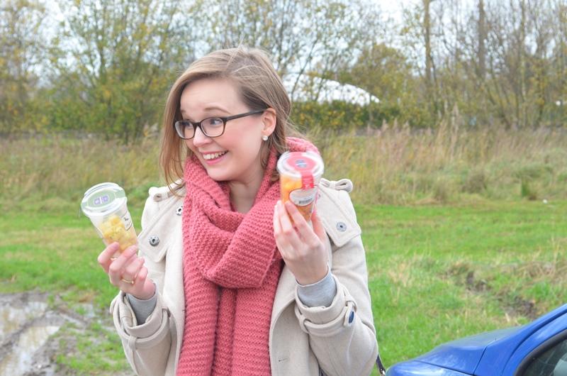 DSC 4317 - Elise's Weekly Pictorama November #4 - Kraamvisite & Kerstinkopen