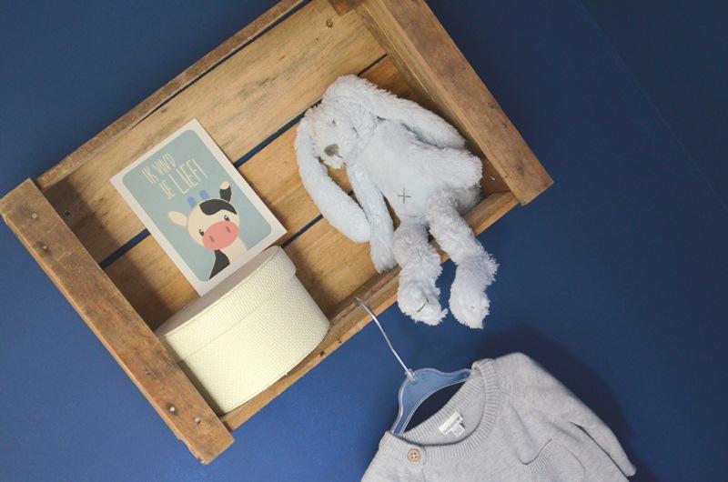 DSC 0255 - Zwangerschapsupdate Week 33 - Babykamer Roomtour! Video + Foto's