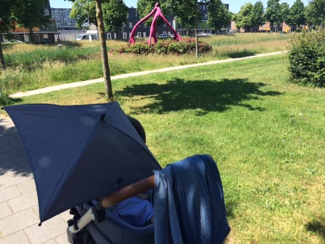 IMG 5577 640x480 - Elise's Weekly Pictorama Juni 2016 #2 - Opel, Leiden en veel Wandelen