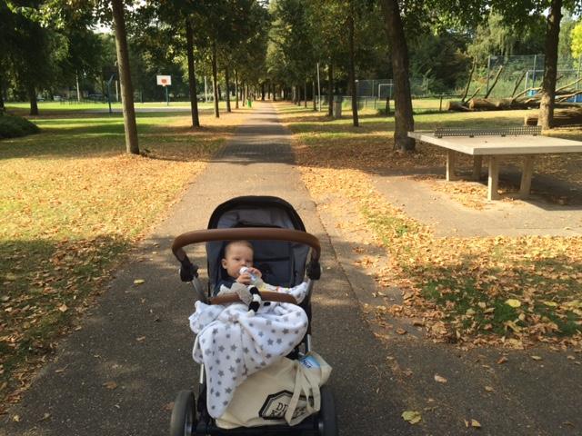 Elise's Weekly Pictorama - September 2016 #5: Gastouder, Werken & de Kuip!