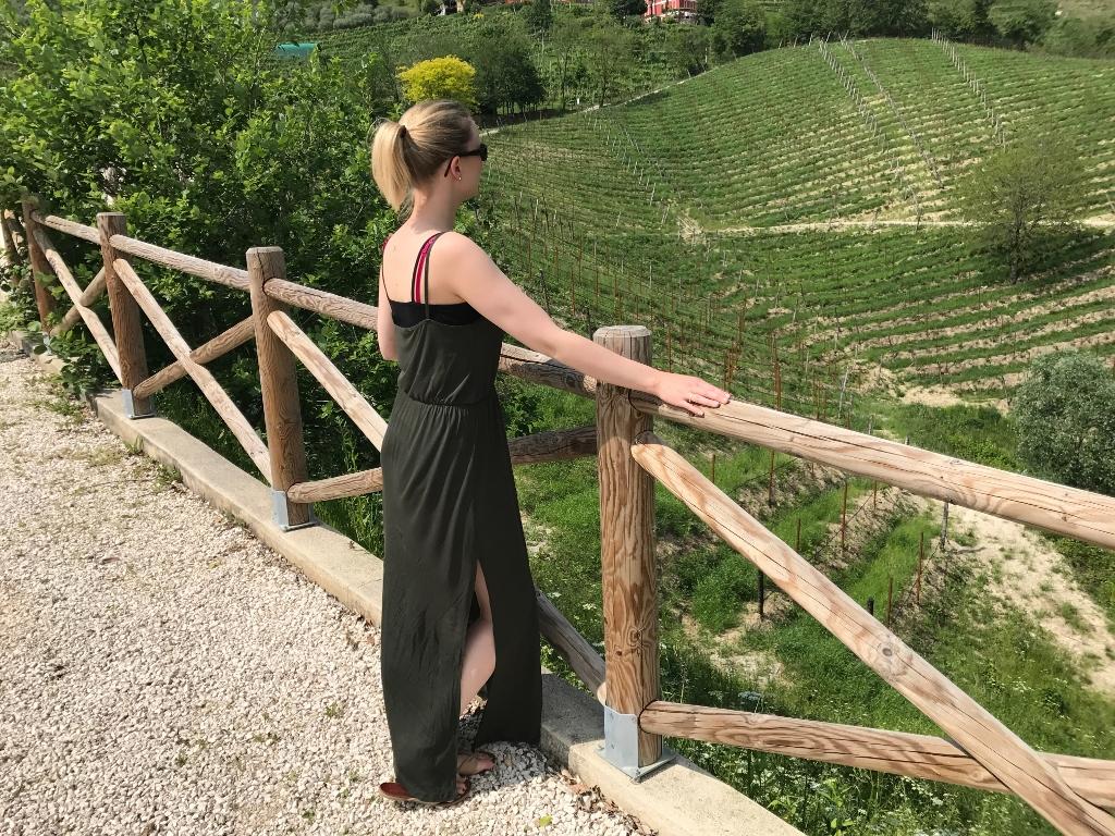 Elise's Weekly Pictorama Mei 2017 #3 - Consternatiebureau & Persreis Venetië!