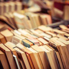 shutterstock 269516258 1024x683 240x240 - Boeken die (in ieder geval) mee gaan op vakantie!