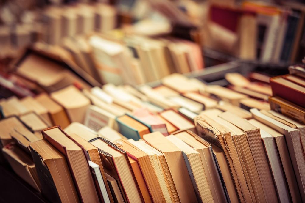 shutterstock 269516258 1024x683 - Boeken die (in ieder geval) mee gaan op vakantie!