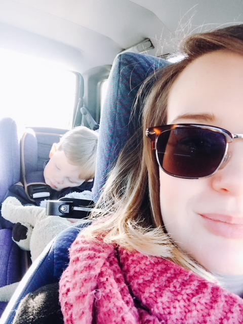 Elise's Weekly Pictorama Januari 2018 #2 - Het normale leven!