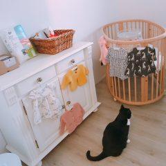 Elise's Weekly Pictorama Januari 2018 #3 - Verf uitzoeken voor de babykamer!