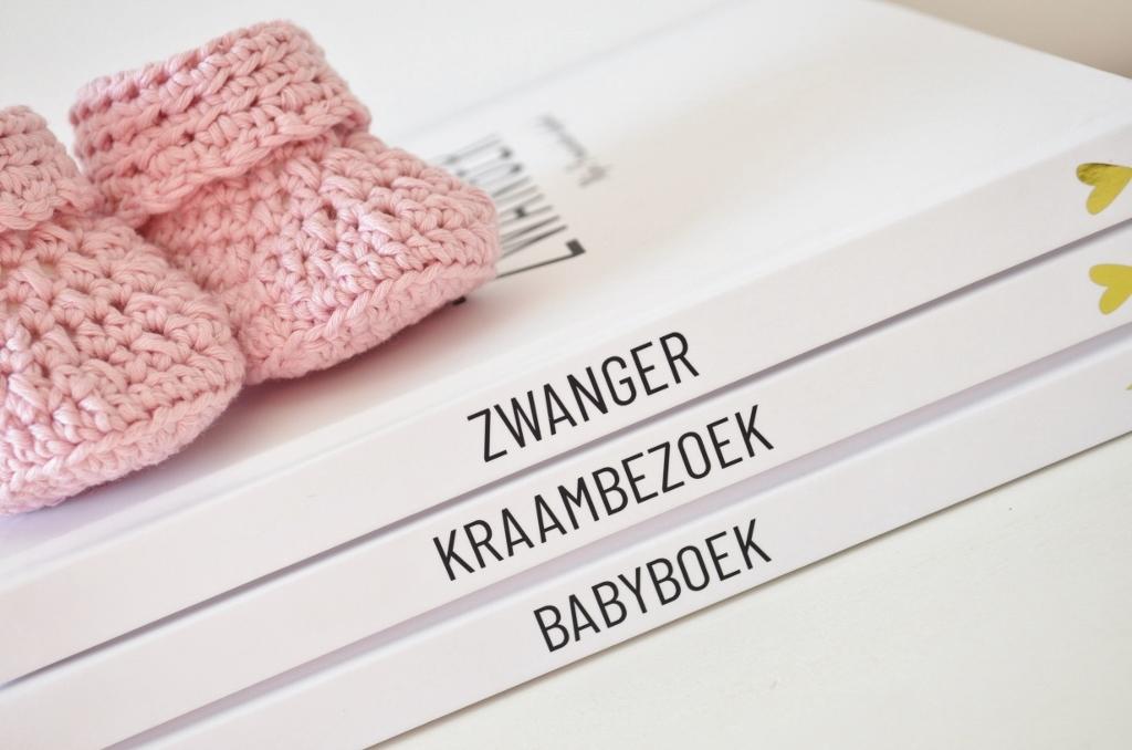 DSC 1459 1024x678 - Nieuwe Invulboeken! Zwangerschap, Baby & Kraambezoek