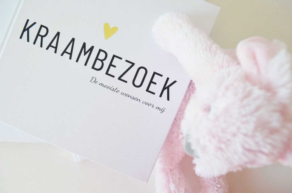 Nieuwe Invulboeken! Zwangerschap, Baby & Kraambezoek