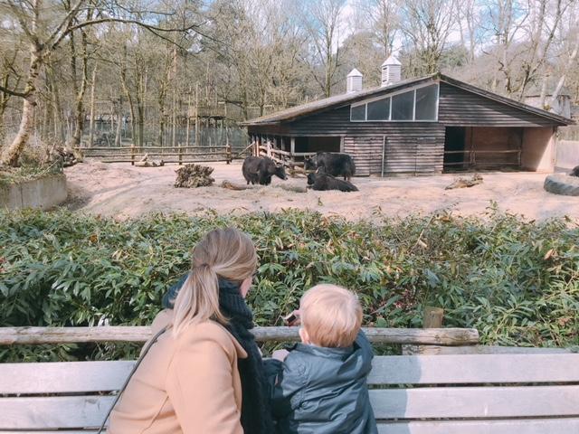 Elise's Weekly Pictorama Maart 2018 #4 - Vakantie & Pasen!