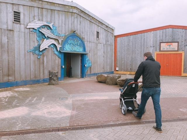 Pretpark bezoeken met je peuter; op naar het Dolfinarium!