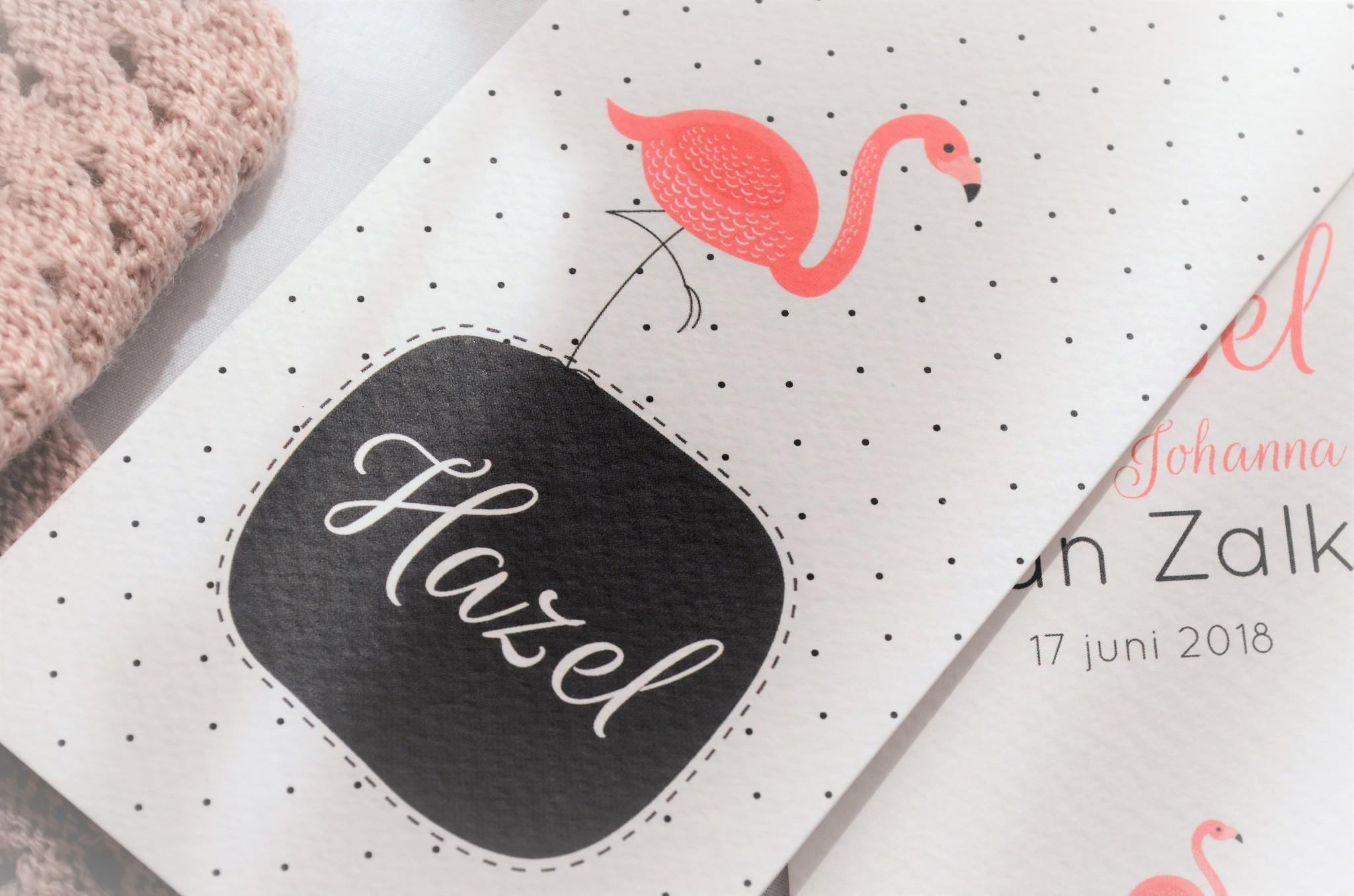 Tijd om het geboortekaartje te laten zien! Ook een proces waar wij veel liefde en aandacht in hebben gestopt. Wij zijn wederom uitgekomen bij dezelfde organisatie waar het kaartje van Fos ook van was, wij wilden namelijk een kaartje die niet heel mainstream genoemd kon worden maar wel gewoon heel tof is. Oh, en een flamingo zou bevatten want tja, flamingo's is leven! Kijk je mee?