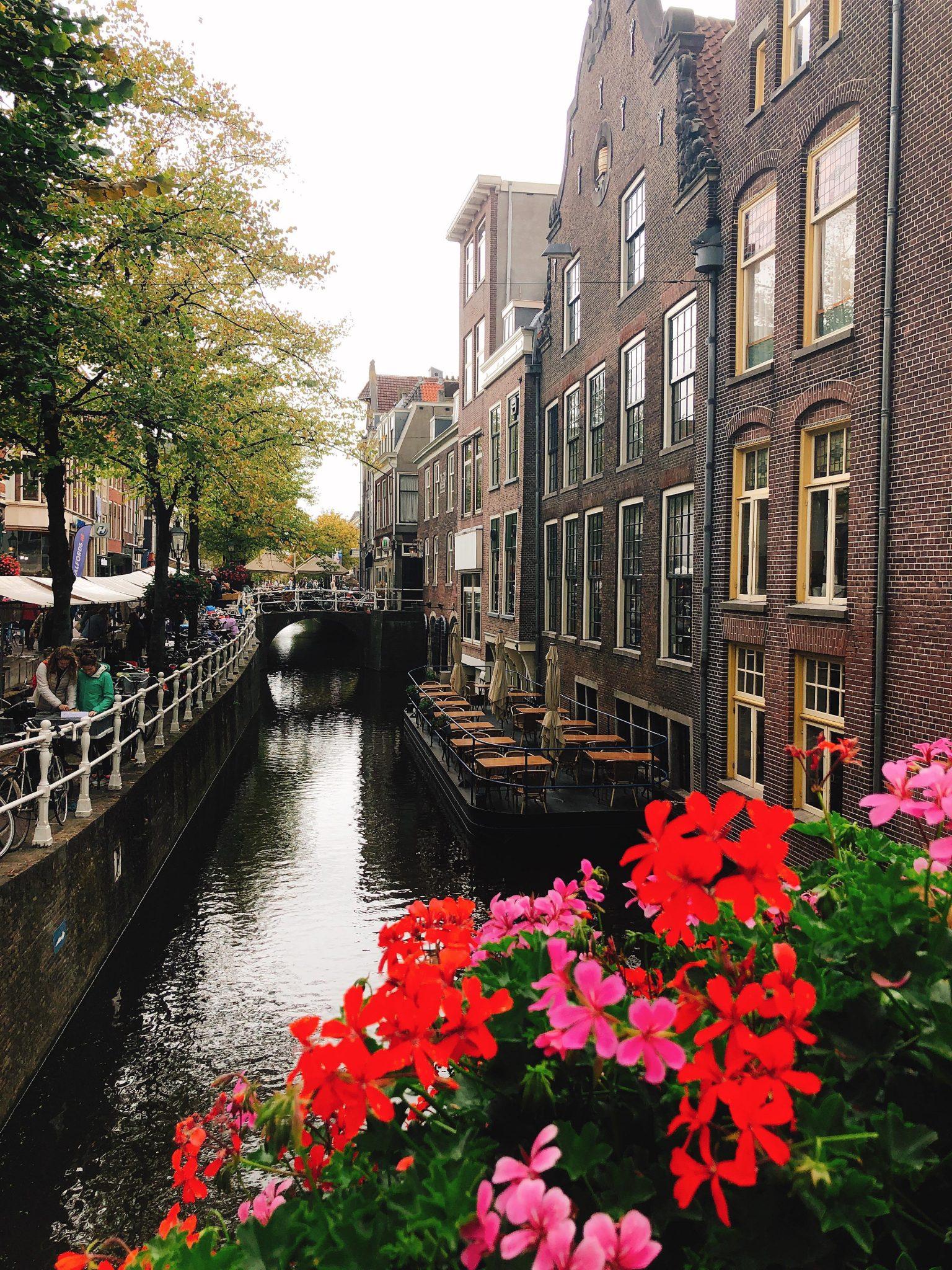 Elise's Weekly Pictorama - Weekendje weg naar Delft! En voedselvergiftiging..