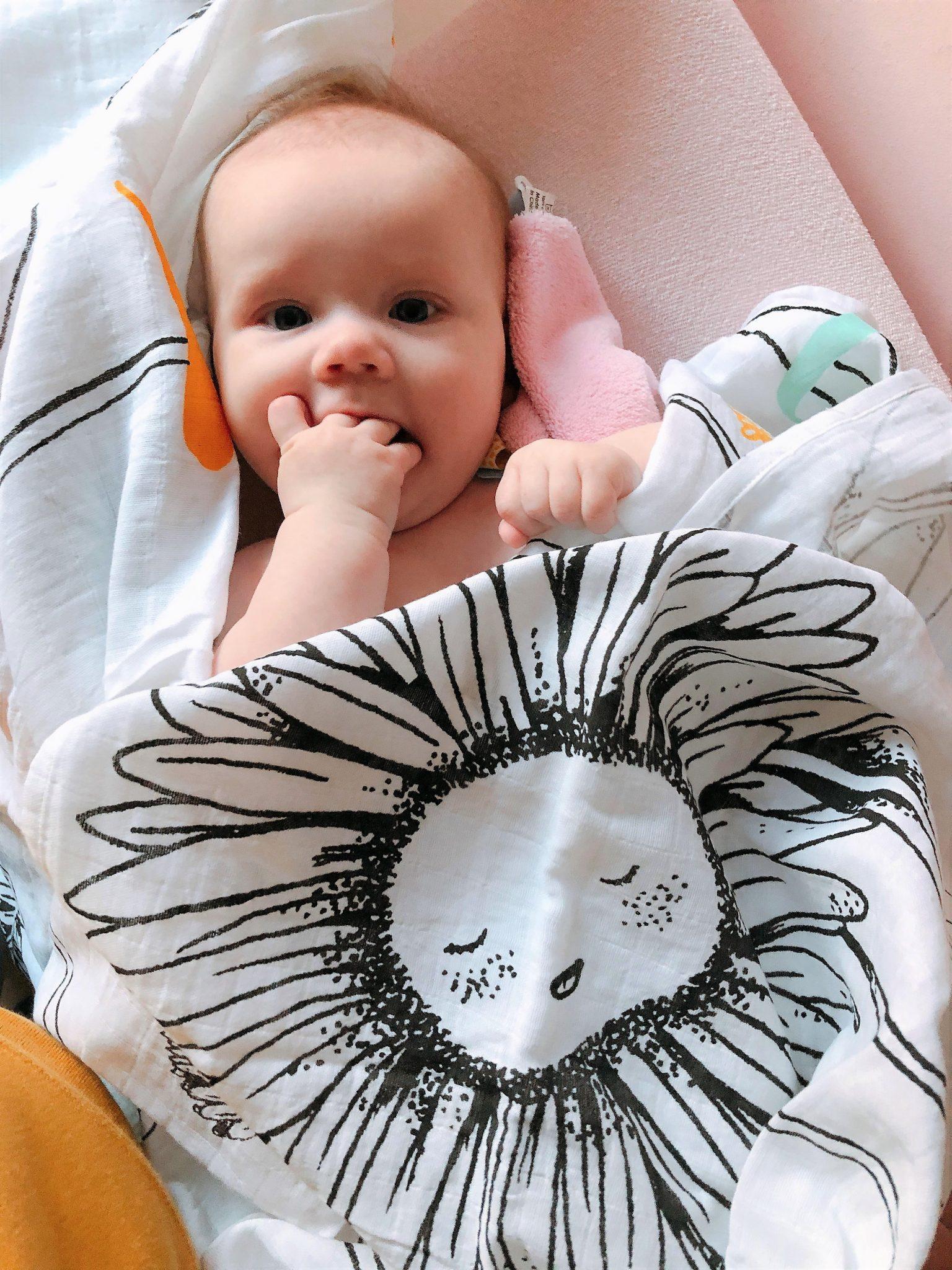 IMG 3949 4032x3024 1 - Elise's Weekly Pictorama - Genieten van de herfst!