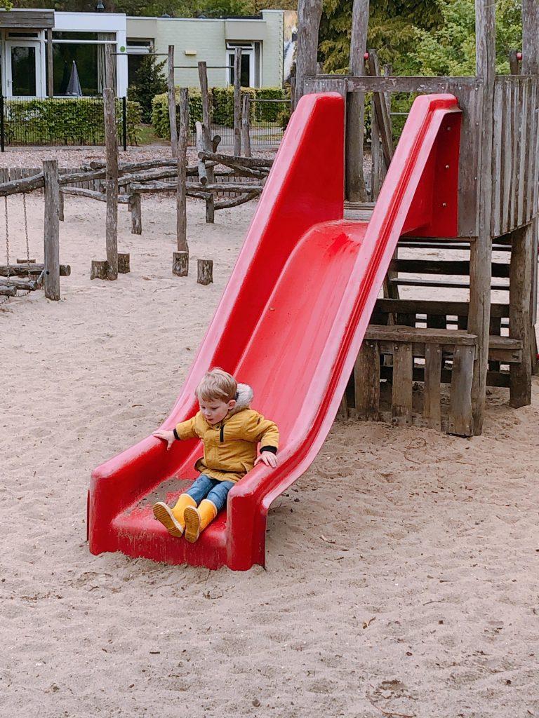 IMG 5120 3024x4032 768x1024 - Fotodagboek Vakantiepark Dierenbos & Beekse Bergen!