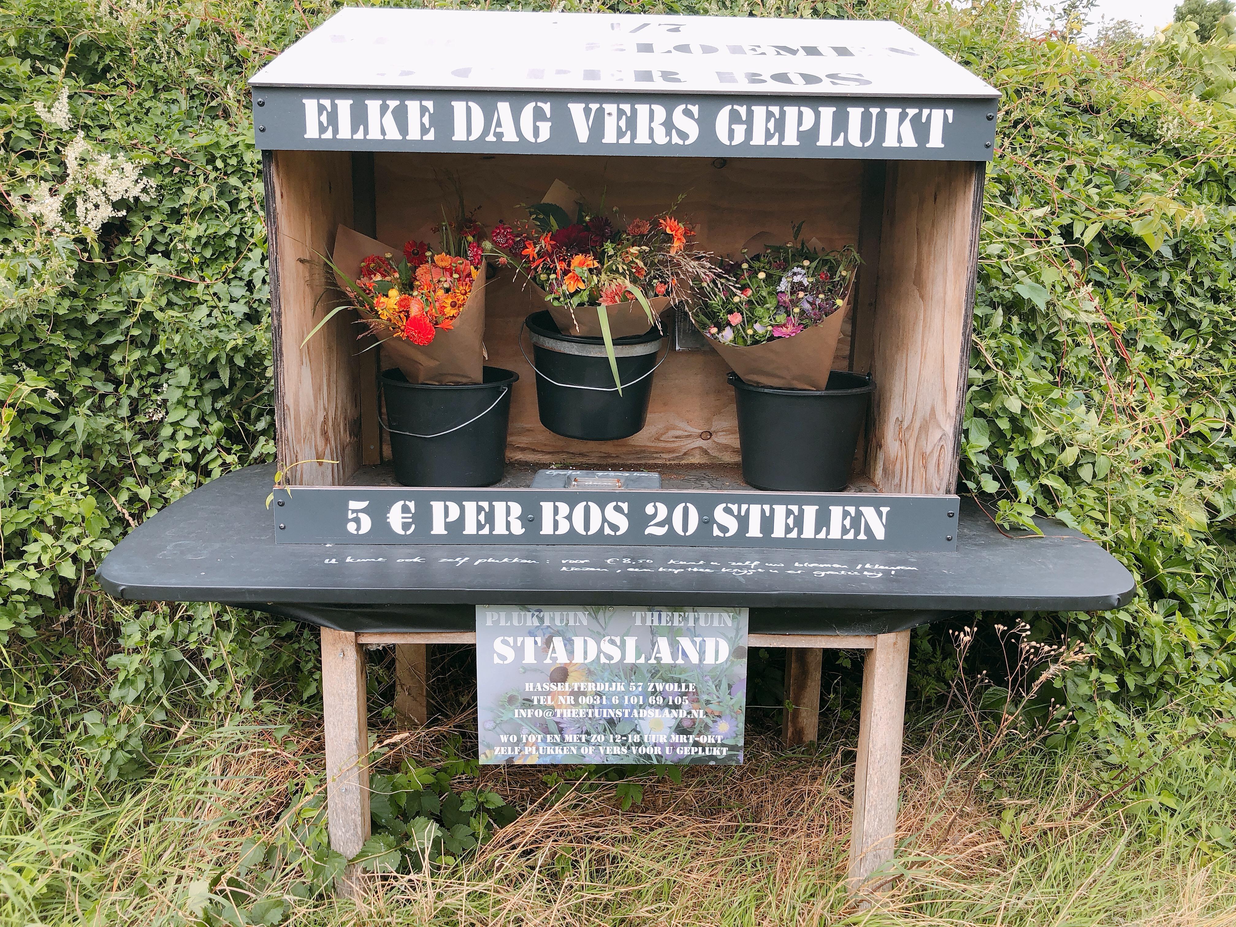 IMG 1174 - Low-budget uitjes tip: Pluk- en theetuin Stadsland!