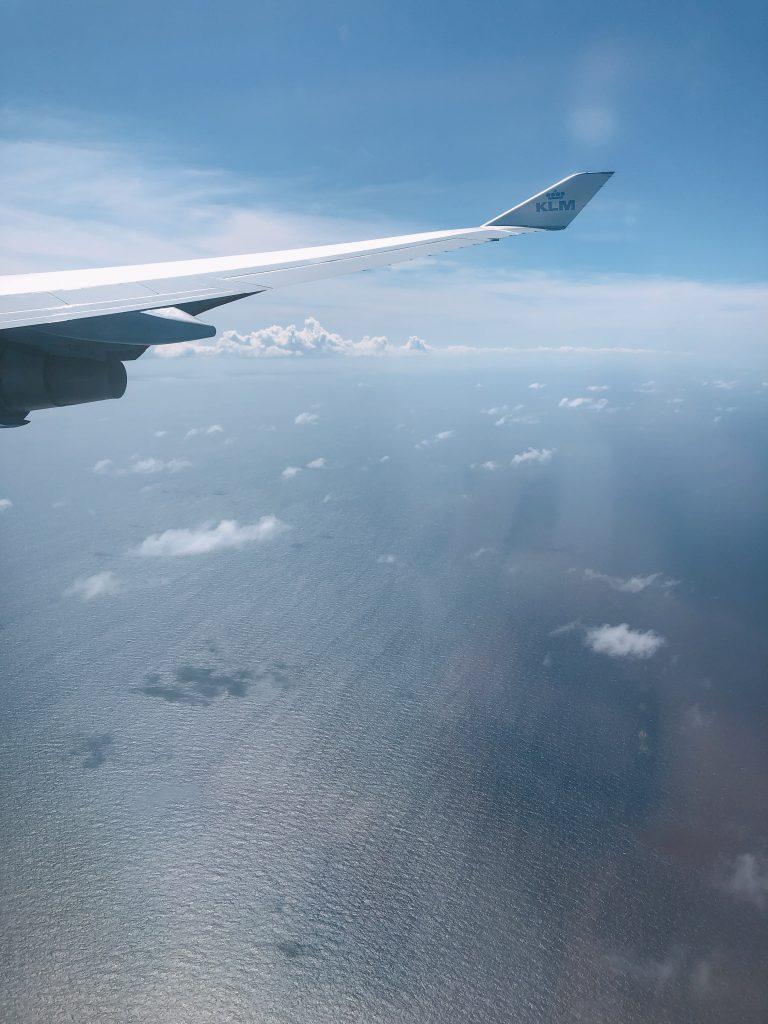 IMG 5568 768x1024 - Elise's Weekly Pictorama #8 - Op naar Curaçao!