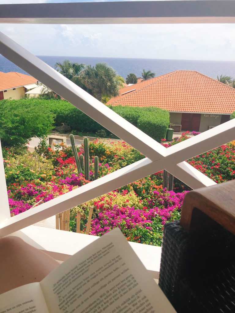 IMG 5688 768x1024 - Elise's Weekly Pictorama #8 - Op naar Curaçao!