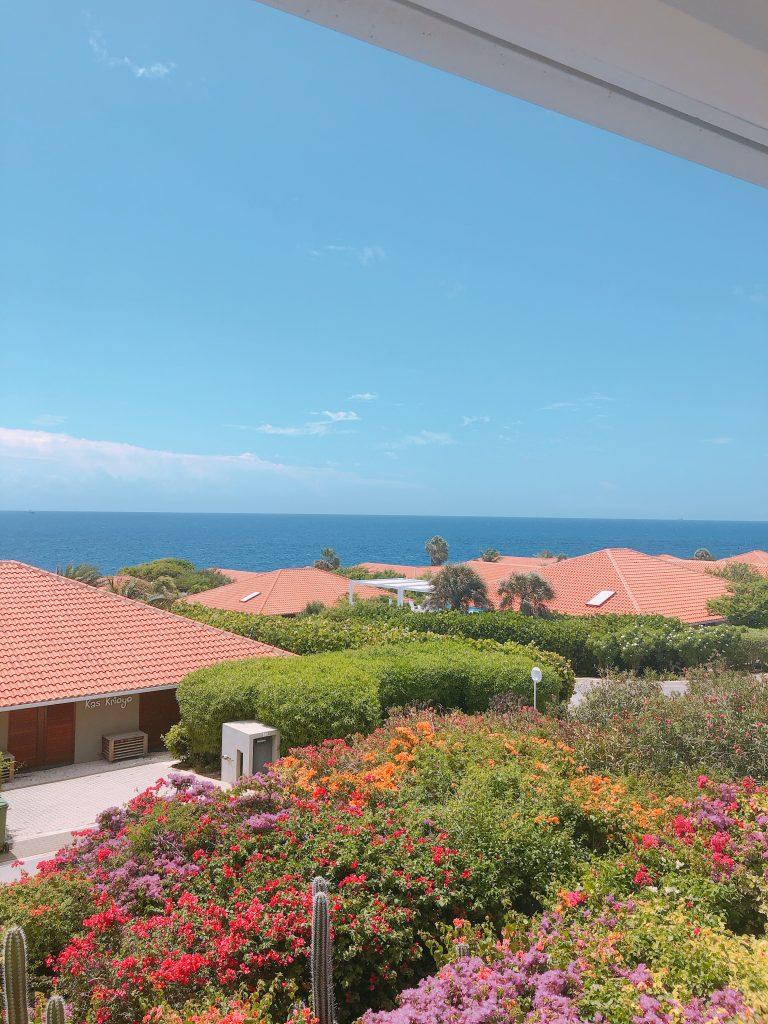 IMG 5881 768x1024 - Elise's Weekly Pictorama #8 - Op naar Curaçao!