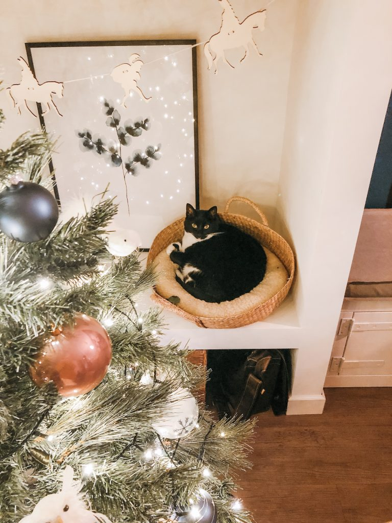 IMG 7989 768x1024 - Elise's Weekly Pictorama #13 - Tijd voor de kerstboom!