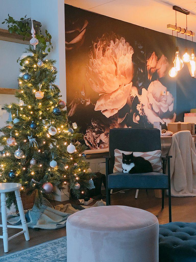 Elise's Weekly Pictorama #13 - Tijd voor de kerstboom!