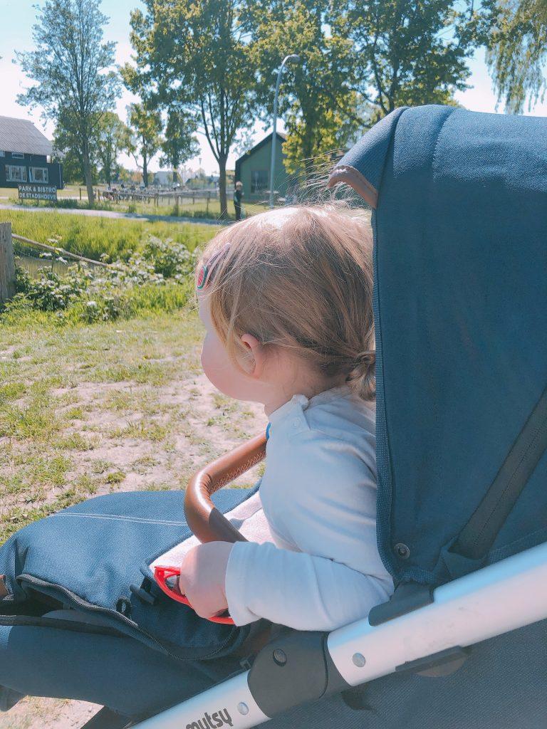 IMG 6548 768x1024 - Elise's Weekly Pictorama #31 - Bijna, bijna!