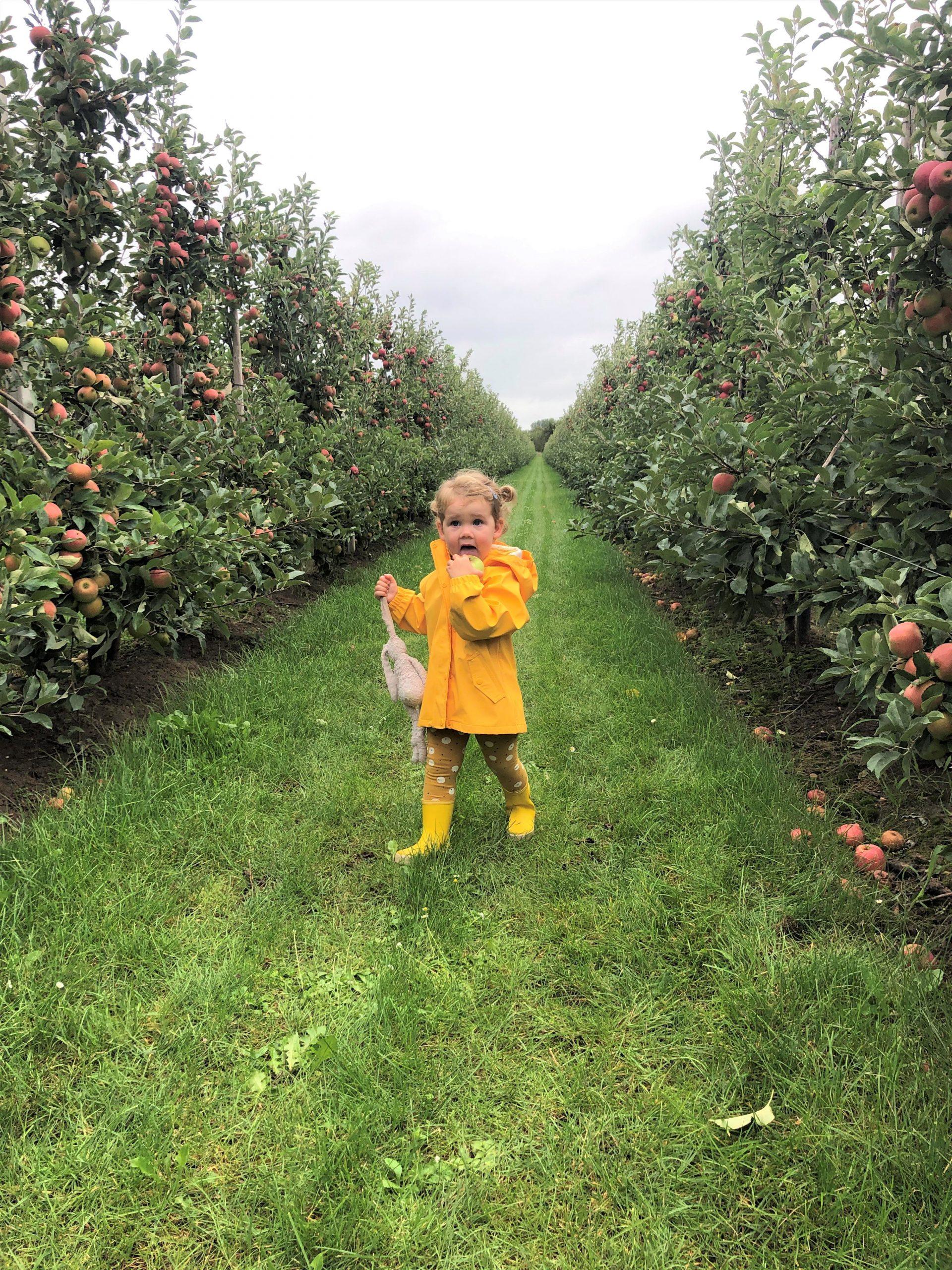 IMG 3920 3024x4032 1 scaled - PLOG - Met z'n viertjes naar de appelboomgaard en het Servero Food Lab!
